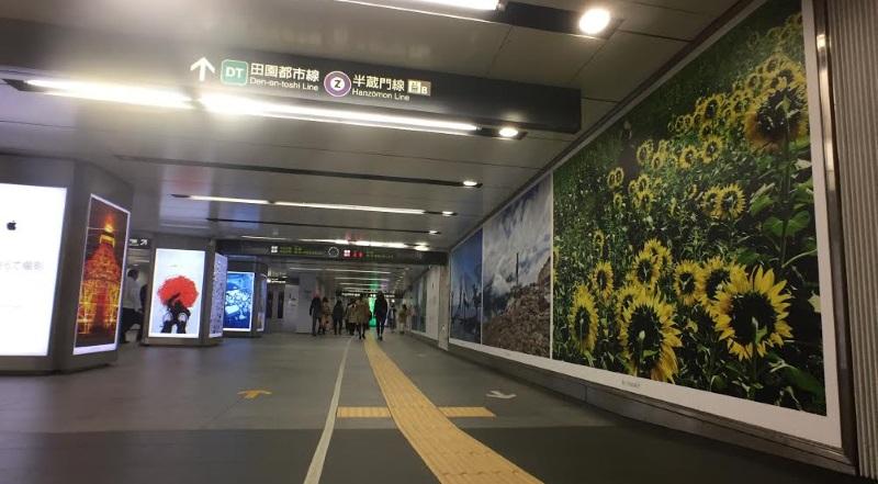渋谷駅 Shot on iPhone 6